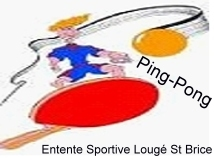 tennis de table ping-pong à louge-sur-maire